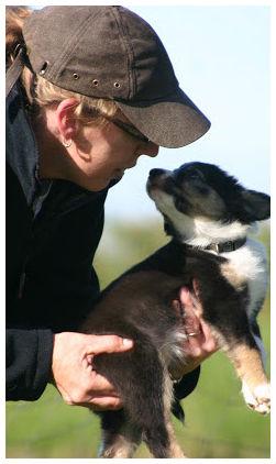 franca-pup